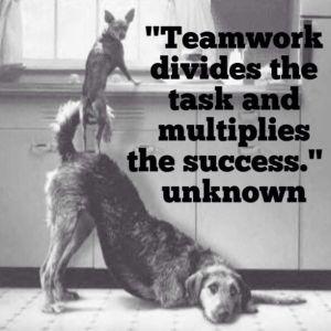 team work1